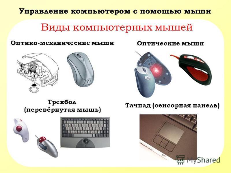 Управление компьютером с помощью мыши Виды компьютерных мышей Оптико-механические мыши Оптические мыши Трекбол (перевёрнутая мышь) Тачпад (сенсорная панель)