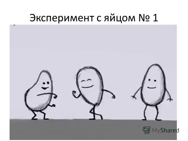 Эксперимент с яйцом 1