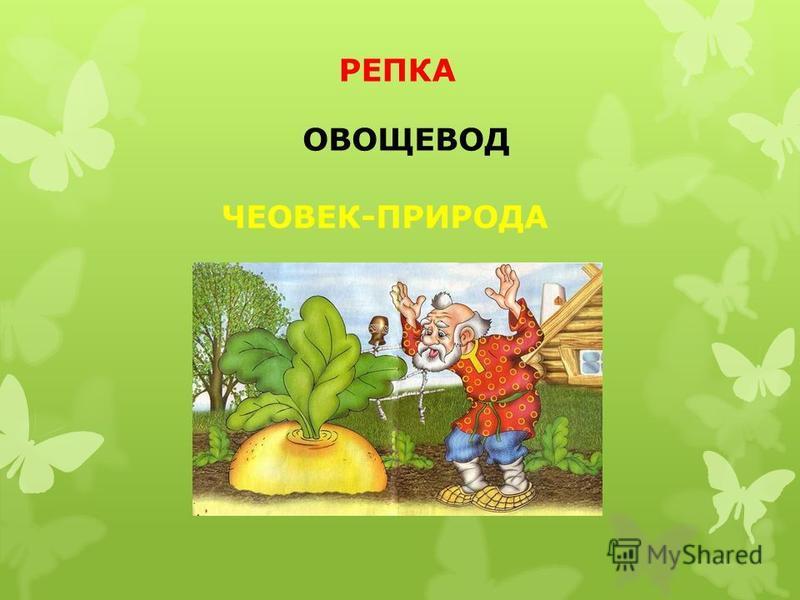 РЕПКА ЧЕОВЕК-ПРИРОДА ОВОЩЕВОД