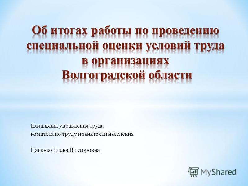 Начальник управления труда комитета по труду и занятости населения Цапенко Елена Викторовна