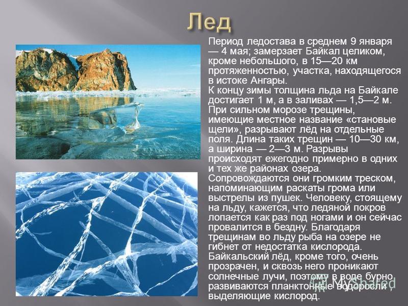 Период ледостава в среднем 9 января 4 мая; замерзает Байкал целиком, кроме небольшого, в 1520 км протяженностью, участка, находящегося в истоке Ангары. К концу зимы толщина льда на Байкале достигает 1 м, а в заливах 1,52 м. При сильном морозе трещины