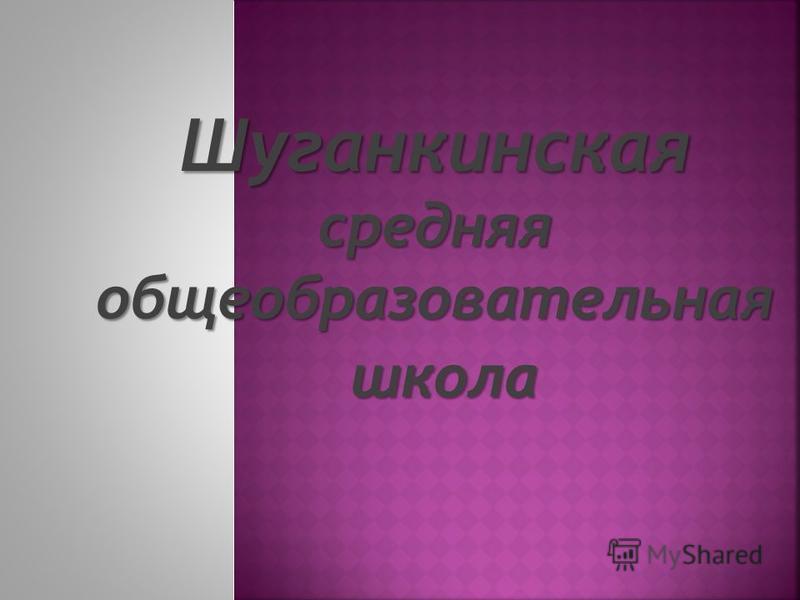 Шуганкинская средняя общеобразовательная школа школа