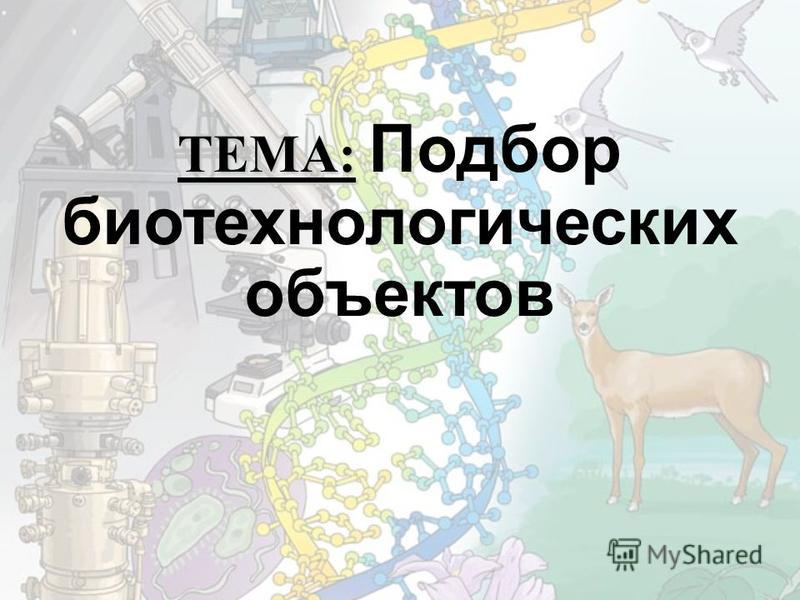 ТЕМА: ТЕМА: Подбор биотехнологических объектов