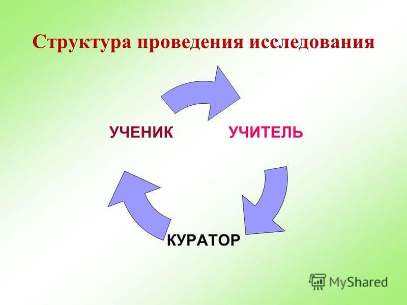 Структура проведения исследования УЧИТЕЛЬ КУРАТОР УЧЕНИК