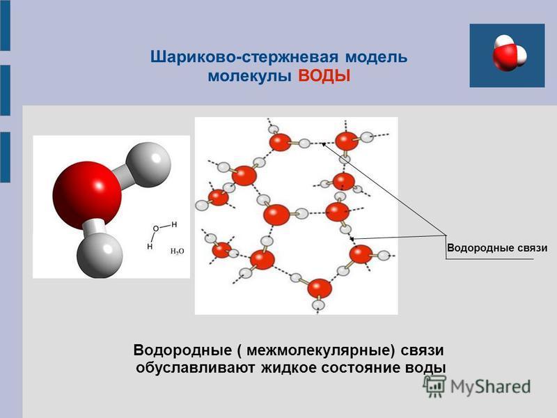 Шариково-стержневая модель молекулы ВОДЫ Водородные связи Водородные ( межмолекулярные) связи обуславливают жидкое состояние воды