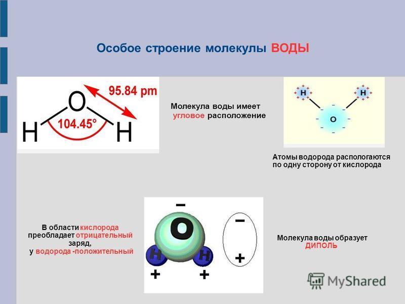 Особое строение молекулы ВОДЫ Молекула воды имеет угловое расположение Атомы водорода располагаются по одну сторону от кислорода В области кислорода преобладает отрицательный заряд, у водорода -положительный Молекула воды образует ДИПОЛЬ