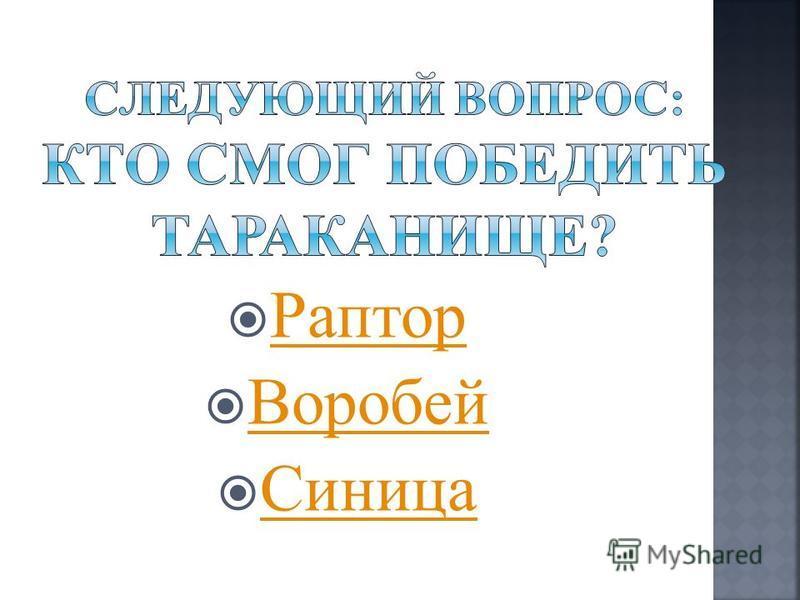 Раптор Воробей Синица