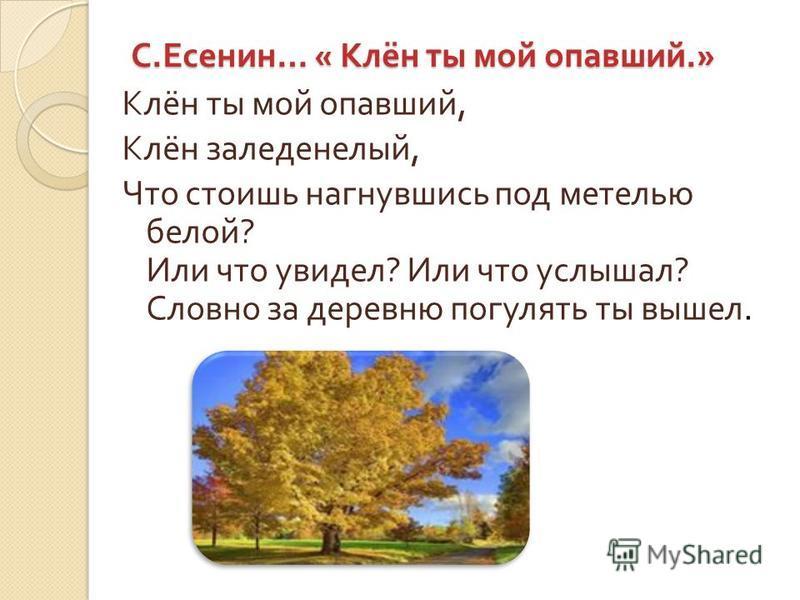 Риторический вопрос может включать в себя очень глубокий смысл и русские писатели используют этот приём в своих произведениях.