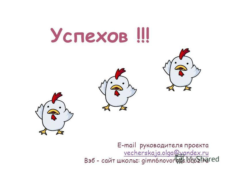 Успехов !!! E-mail руководителя проекта vecherskaja.olga@yandex.ru vecherskaja.olga@yandex.ru Вэб - сайт школы: gimn6novoross.ucoz.ru