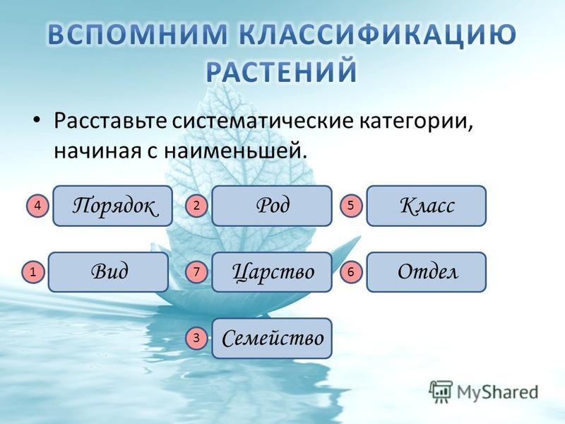 Расставьте систематические категории, начиная с наименьшей. Вид Класс ПорядокРод Отдел Царство Семейство 76 54 3 2 1