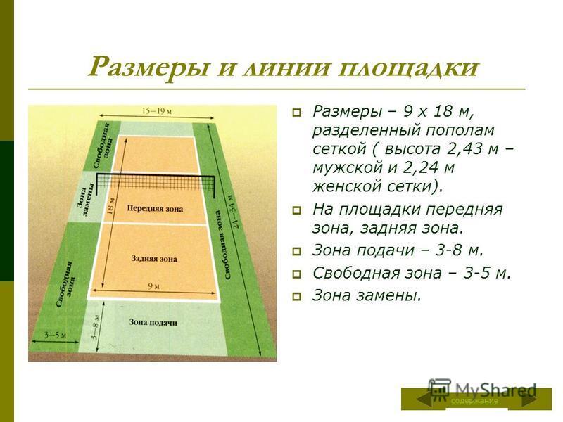 Размеры и линии площадки Размеры – 9 х 18 м, разделенный пополам сеткой ( высота 2,43 м – мужской и 2,24 м женской сетки). На площадки передняя зона, задняя зона. Зона подачи – 3-8 м. Свободная зона – 3-5 м. Зона замены. содержание