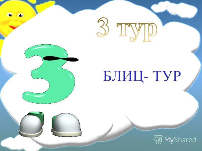 БЛИЦ- ТУР