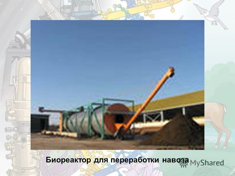 Биореактор для переработки навоза