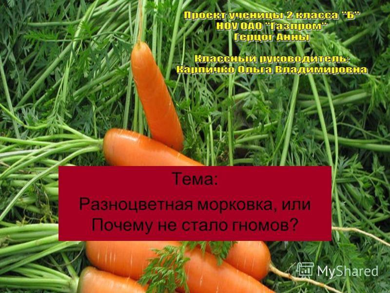 Тема: Разноцветная морковка, или Почему не стало гномов?