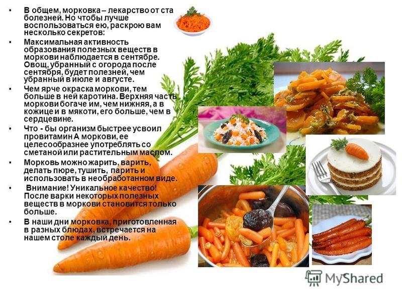 В общем, морковка – лекарство от ста болезней. Но чтобы лучше воспользоваться ею, раскрою вам несколько секретов: Максимальная активность образования полезных веществ в моркови наблюдается в сентябре. Овощ, убранный с огорода после сентября, будет по