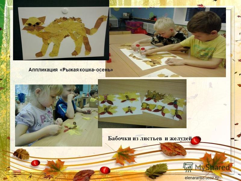 Аппликация «Рыжая кошка- осень» Бабочки из листьев и желудей