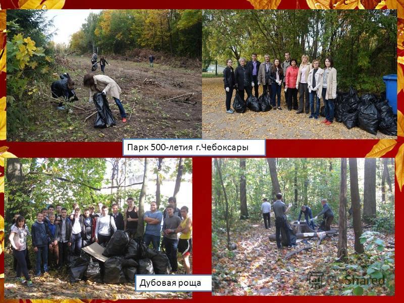 Парк 500-летия г.Чебоксары Дубовая роща