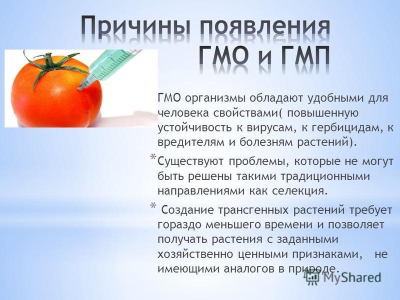 * ГМО организмы обладают удобными для человека свойствами( повышенную устойчивость к вирусам, к гербицидам, к вредителям и болезням растений). * Существуют проблемы, которые не могут быть решены такими традиционными направлениями как селекция. * Созд