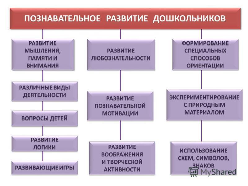 ПОЗНАВАТЕЛЬНОЕ РАЗВИТИЕ ДОШКОЛЬНИКОВ РАЗВИТИЕМЫШЛЕНИЯ, ПАМЯТИ И ВНИМАНИЯ РАЗВИТИЕМЫШЛЕНИЯ, РАЗВИТИЕЛЮБОЗНАТЕЛЬНОСТИРАЗВИТИЕЛЮБОЗНАТЕЛЬНОСТИ ФОРМИРОВАНИЕ СПЕЦИАЛЬНЫХ СПОСОБОВ ОРИЕНТАЦИИ ЭКСПЕРИМЕНТИРОВАНИЕ С ПРИРОДНЫМ МАТЕРИАЛОМ ИСПОЛЬЗОВАНИЕ СХЕМ, СИ