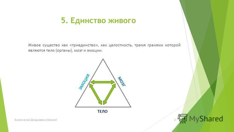 Живое существо как «триединство», как целостность, тремя гранями которой являются тело (органы), мозг и эмоции. Биологическое Декодирование Болезней 23 5. Единство живого ЭМОЦИЯ МОЗГ ТЕЛО