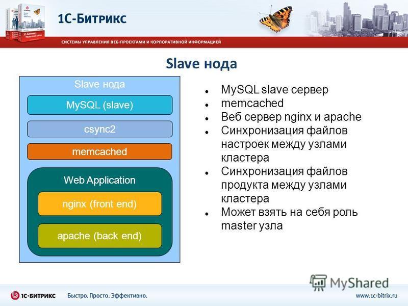 Slave нода MySQL slave сервер memcached Веб сервер nginx и apache Синхронизация файлов настроек между узлами кластера Синхронизация файлов продукта между узлами кластера Может взять на себя роль master узла Slave нода MySQL (slave) Web Application ng