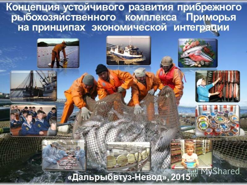 Концепция устойчивого развития прибрежьеьеьеного рыбохозяйственного комплекса Приморья на принципах экономической интеграции «Дальрыбвтуз-Невод», 2015