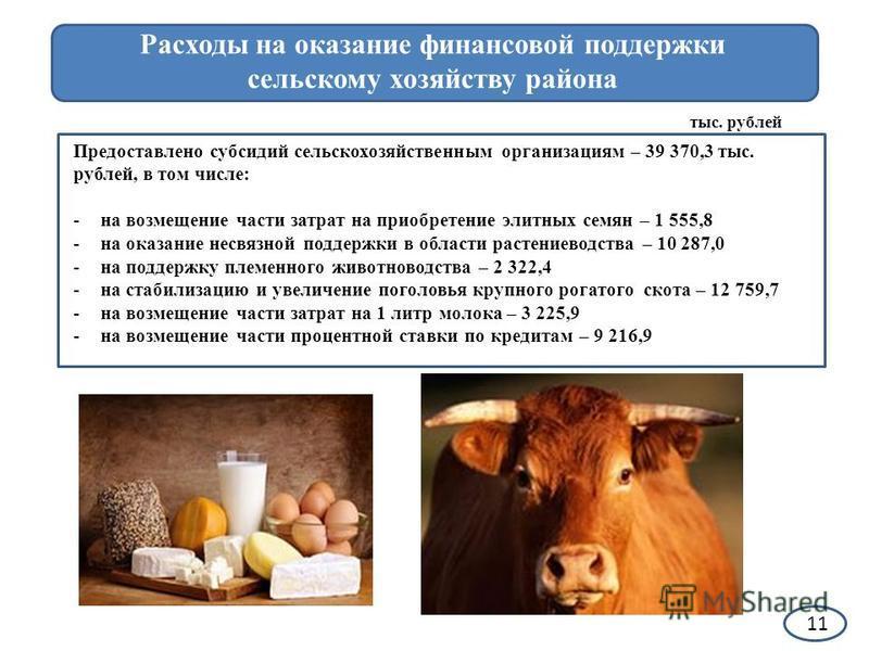 Какие капитальные вложения будут осуществлены в рамках муниципальных программ 11 Расходы на оказание финансовой поддержки сельскому хозяйству района Предоставлено субсидий сельскохозяйственным организациям – 39 370,3 тыс. рублей, в том числе: -на воз