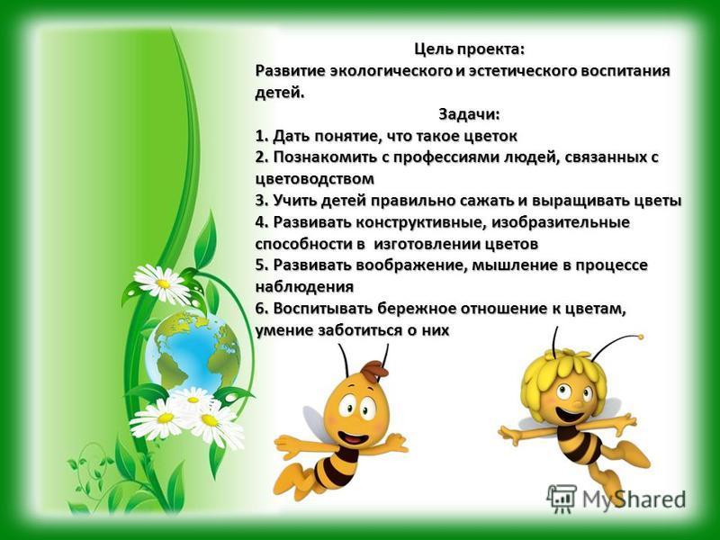 Цель проекта: Развитие экологического и эстетического воспитания детей. Задачи: 1. Дать понятие, что такое цветок 2. Познакомить с профессиями людей, связанных с цветоводством 3. Учить детей правильно сажать и выращивать цветы 4. Развивать конструкти