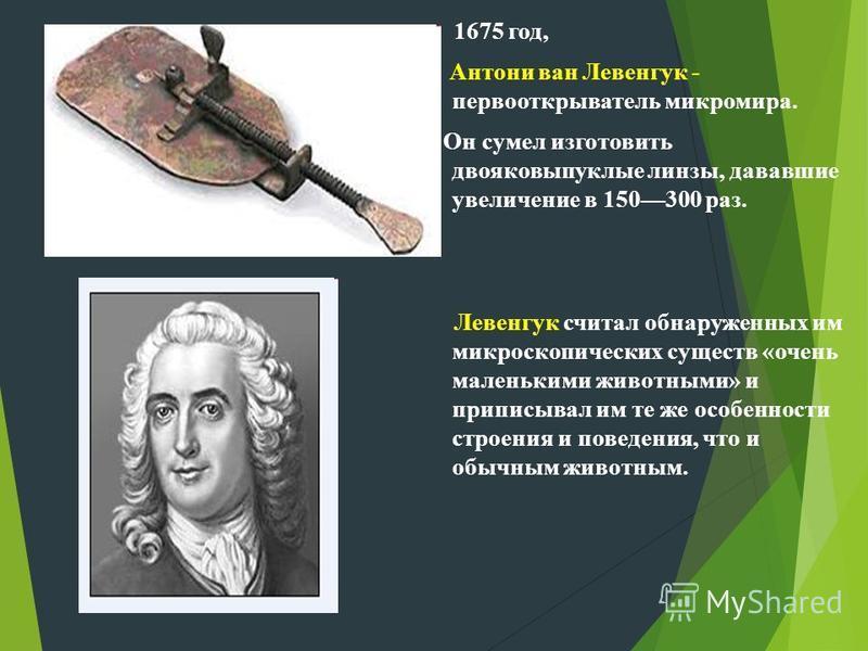 1675 год, Антони ван Левенгук - первооткрыватель микромира. Он сумел изготовить двояковыпуклые линзы, дававшие увеличение в 150300 раз. Левенгук считал обнаруженных им микроскопических существ «очень маленькими животными» и приписывал им те же особен