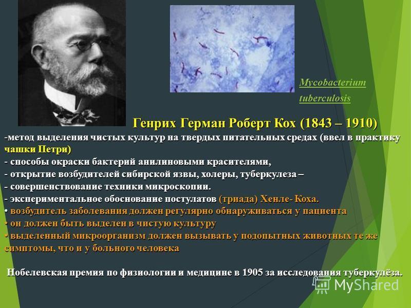 Mycobacterium tuberculosis Генрих Герман Роберт Кох (1843 – 1910) Генрих Герман Роберт Кох (1843 – 1910) -метод выделения чистых культур на твердых питательных средах (ввел в практику чашки Петри) - способы окраски бактерий анилиновыми красителями, -