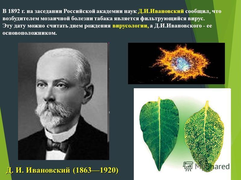 а я В 1892 г. на заседании Российской академии наук Д.И.Ивановский сообщил, что возбудителем мозаичной болезни табака является фильтрующийся вирус. Эту дату можно считать днем рождения вирусологии, а Д.И.Ивановского - ее основоположником. Д. И. Ивано