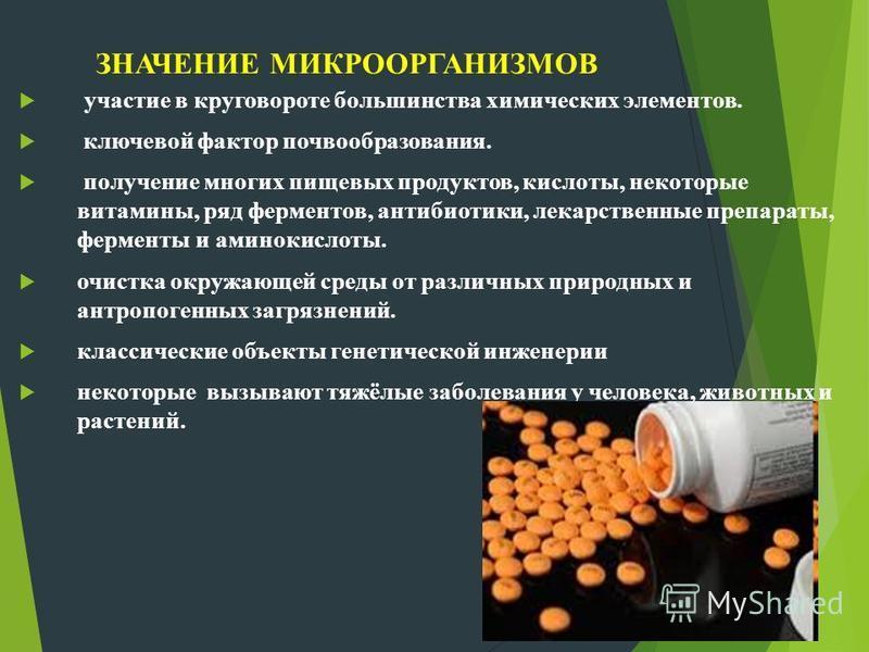 ЗНАЧЕНИЕ МИКРООРГАНИЗМОВ участие в круговороте большинства химических элементов. ключевой фактор почвообразования. получение многих пищевых продуктов, кислоты, некоторые витамины, ряд ферментов, антибиотики, лекарственные препараты, ферменты и аминок
