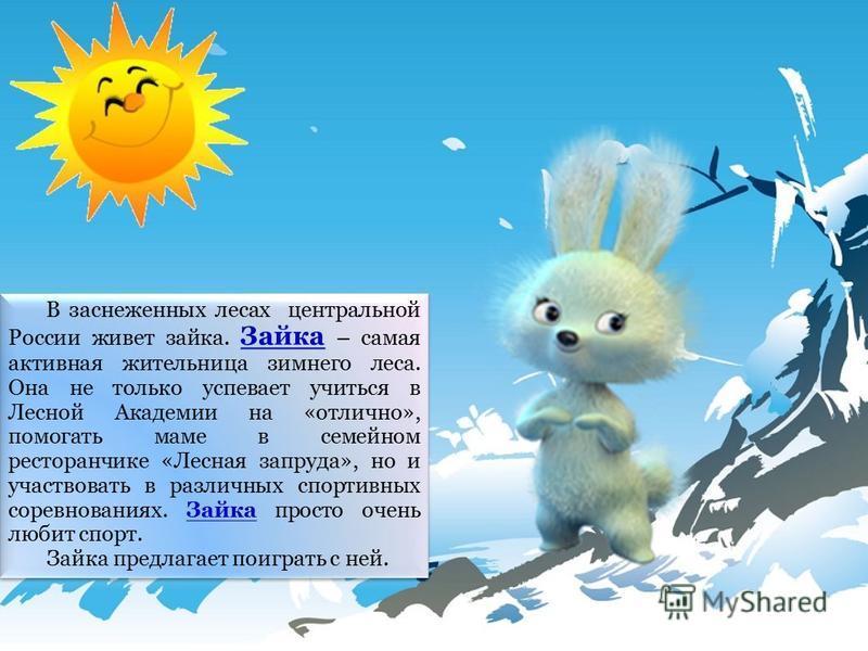В заснеженных лесах центральной России живет зайка. Зайка – самая активная жительница зимнего леса. Она не только успевает учиться в Лесной Академии на «отлично», помогать маме в семейном ресторанчике «Лесная запруда», но и участвовать в различных сп