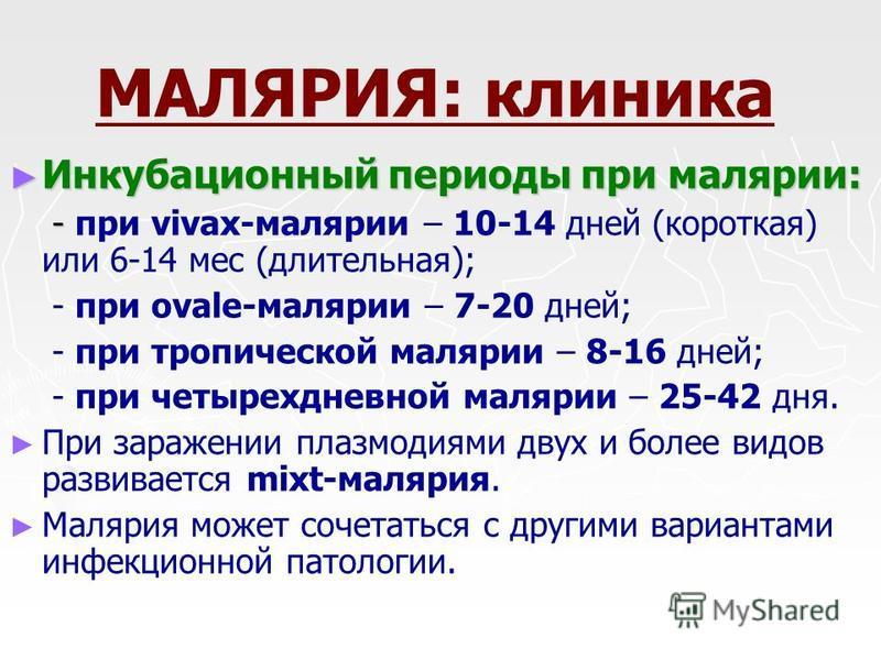 МАЛЯРИЯ: клиника Инкубационный периоды при малярии: Инкубационный периоды при малярии: - - при vivax-малярии – 10-14 дней (короткая) или 6-14 мес (длительная); - при ovale-малярии – 7-20 дней; - при тропической малярии – 8-16 дней; - при четырехдневн