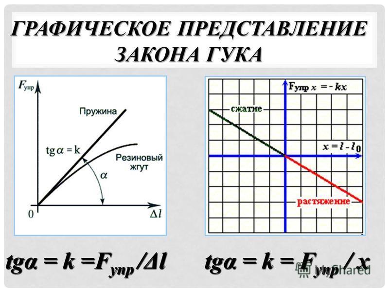 ГРАФИЧЕСКОЕ ПРЕДСТАВЛЕНИЕ ЗАКОНА ГУКА tgα = k =F упр /Δl tgα = k = F упр / х