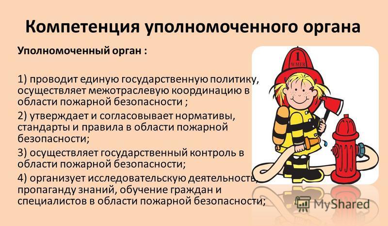 утверждает Положение о прохождении службы рядовым и начальствующим составом органов государственной противопожарной службы; утверждает перечень организаций и объектов, на которых в обязательном порядке создается противопожарная служба; утверждает тех