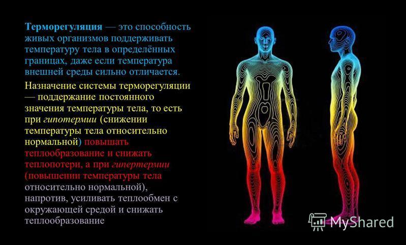 Терморегуляция это способность живых организмов поддерживать температуру тела в определённых границах, даже если температура внешней среды сильно отличается. Назначение системы терморегуляции поддержание постоянного значения температуры тела, то есть