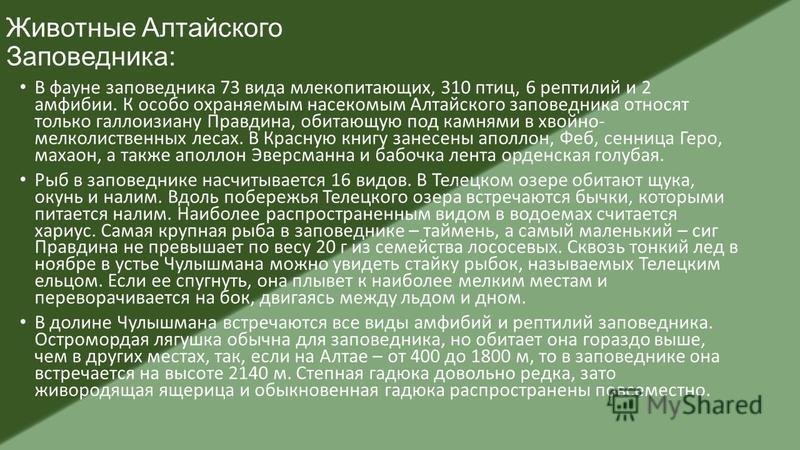 Животные Алтайского Заповедника: В фауне заповедника 73 вида млекопитающих, 310 птиц, 6 рептилий и 2 амфибии. К особо охраняемым насекомым Алтайского заповедника относят только галлоизиану Правдина, обитающую под камнями в хвойно- мелколиственных лес