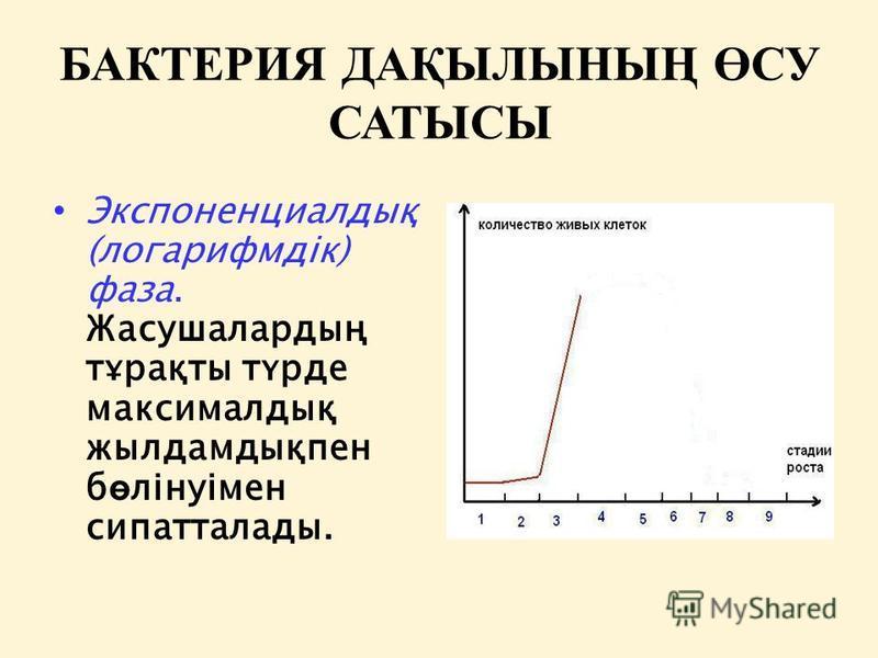 БАКТЕРИЯ ДАҚЫЛЫНЫҢ ӨСУ САТЫСЫ Экспоненциалдық (логарифмдік) фаза. Жасушалардың тұрақты түрде максималдық жылдамдықпен б ө лінуімен сипатталады.