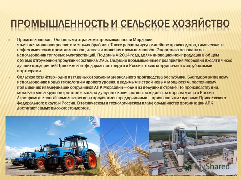 Промышленность - Основными отраслями промышленности Мордовии являются машиностроение и металлообработка. Также развиты чугунолитейное производство, химическая и нефтехимическая промышленность, легкая и пищевая промышленность. Энергетика основана на и
