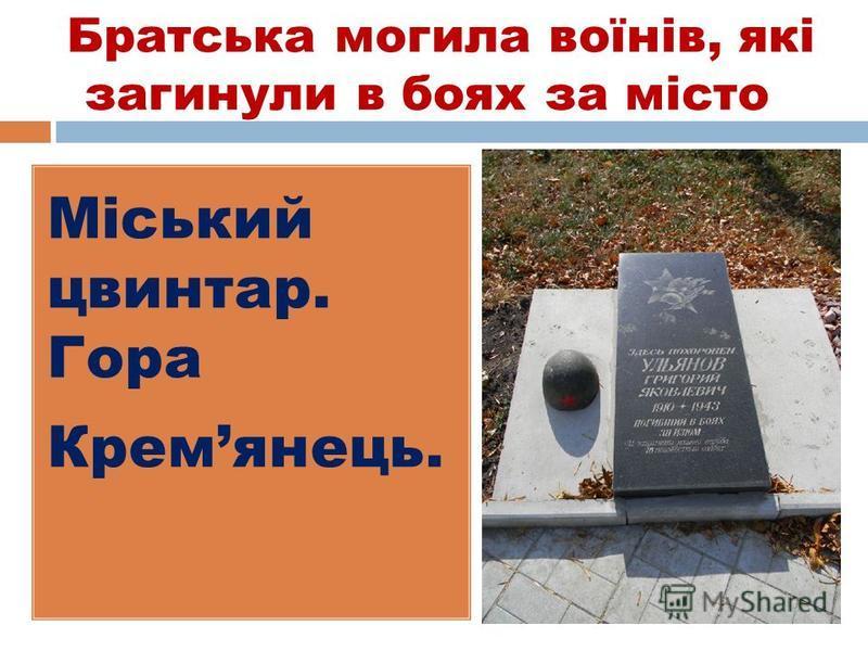 Братська могила воїнів, які загинули в боях за місто Міський цвинтар. Гора Кремянець.