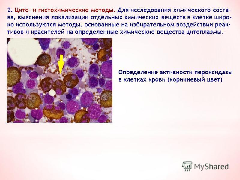 2. Цито- и гистохимические методы. Для исследования химического состава, выяснения локализации отдельных химических веществ в клетке широко используются методы, основанные на избирательном воздействии реактивов и красителей на определенные химические