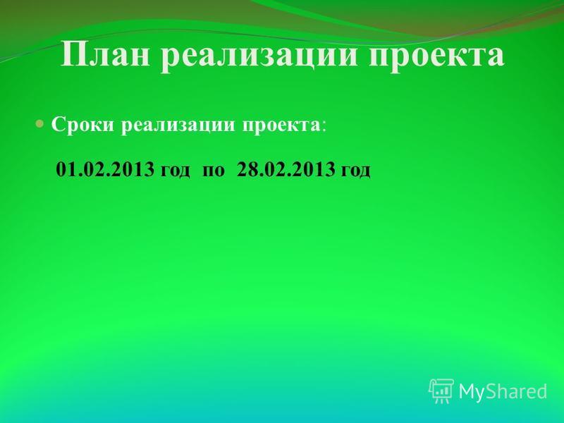 План реализации проекта Сроки реализации проекта: 01.02.2013 год по 28.02.2013 год