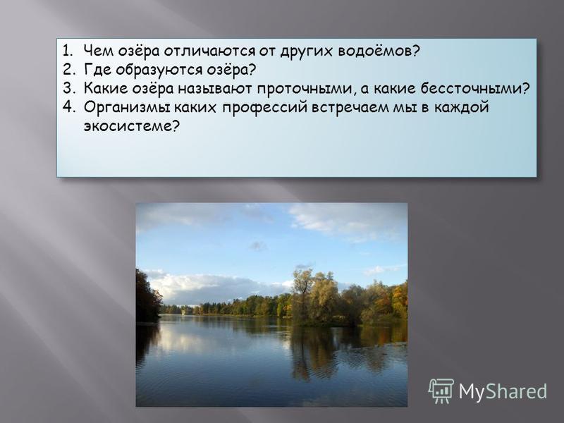 1. Чем озёра отличаются от других водоёмов? 2. Где образуются озёра? 3. Какие озёра называют проточными, а какие бессточными? 4. Организмы каких профессий встречаем мы в каждой экосистеме? 1. Чем озёра отличаются от других водоёмов? 2. Где образуются