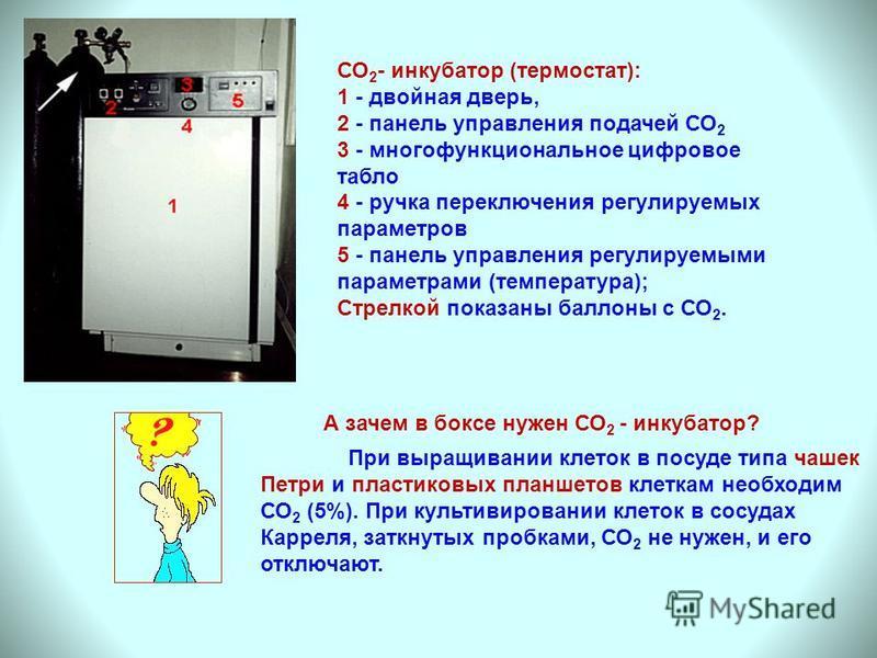 А зачем в боксе нужен СО 2 - инкубатор? При выращивании клеток в посуде типа чашек Петри и пластиковых планшетов клеткам необходим СО 2 (5%). При культивировании клеток в сосудах Карреля, заткнутых пробками, СО 2 не нужен, и его отключают. СО 2 - инк