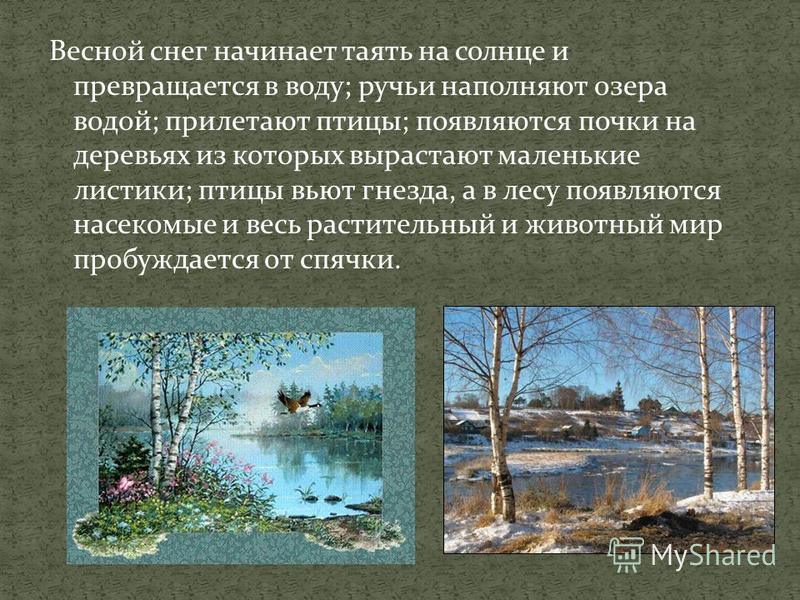 Весной снег начинает таять на солнце и превращается в воду; ручьи наполняют озера водой; прилетают птицы; появляются почки на деревьях из которых вырастают маленькие листики; птицы вьют гнезда, а в лесу появляются насекомые и весь растительный и живо