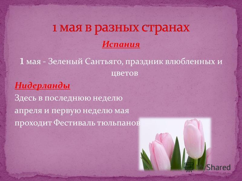 Испания 1 мая - Зеленый Сантьяго, праздник влюбленных и цветов Нидерланды Здесь в последнюю неделю апреля и первую неделю мая проходит Фестиваль тюльпанов