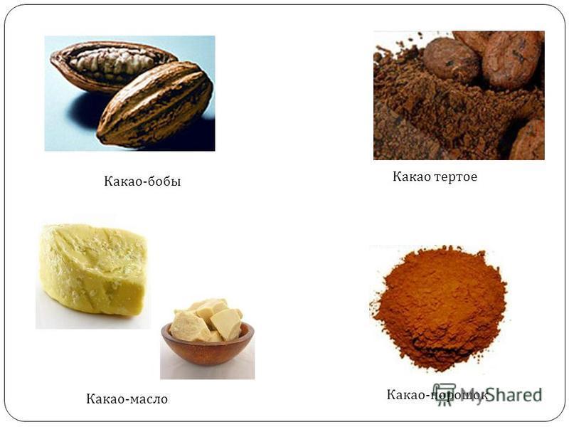 Какао - бобы Какао тертое Какао - масло Какао - порошок