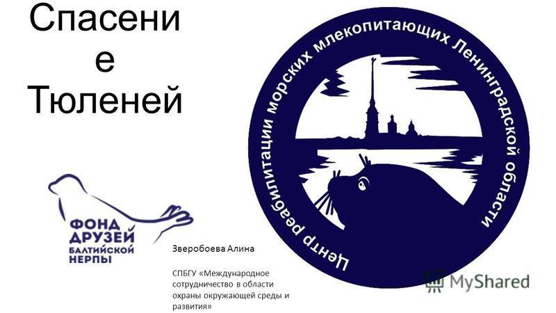 Спасени е Тюленей Зверобоева Алина СПБГУ «Международное сотрудничество в области охраны окружающей среды и развития»