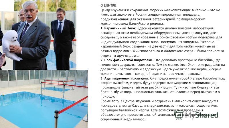 О ЦЕНТРЕ Центр изучения и сохранения морских млекопитающих в Репино – это не имеющая аналогов в России специализированная площадка, предназначенная для оказания ветеринарной помощи морским млекопитающим Балтийского региона. 1. Карантинный блок. Здесь